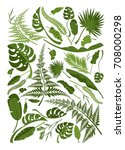 vector collection of exotic... | Shutterstock .eps vector #708000298