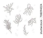 vector illustration sketch set