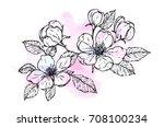 ink  pencil  watercolor flower... | Shutterstock .eps vector #708100234