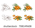 vector  color and sketch  tasty ...   Shutterstock .eps vector #708149608
