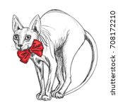 sphynx cat in a smart red bow. | Shutterstock .eps vector #708172210