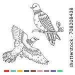 coloring book birds... | Shutterstock .eps vector #708208438