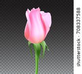 realistic rose bud with stem... | Shutterstock .eps vector #708337588