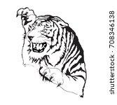 Tiger Silhouette  Vector