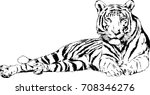 tiger drawn with ink from the... | Shutterstock .eps vector #708346276