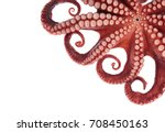 beautiful of a squid tentacles... | Shutterstock . vector #708450163