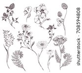 vector hand drawn set with wild ... | Shutterstock .eps vector #708594808