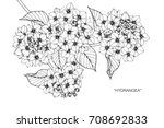 hand drawn and sketch hydrangea ... | Shutterstock .eps vector #708692833