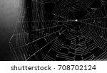 spider web | Shutterstock . vector #708702124