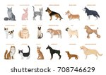 dogs and cats set. pets breed...   Shutterstock .eps vector #708746629