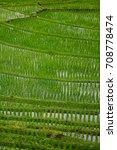 pa pong piang rice terraces ...   Shutterstock . vector #708778474