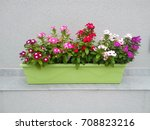 Green Planter With Colorful...