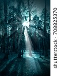 night dark forest in fall... | Shutterstock . vector #708825370
