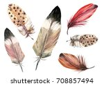 set of feathers  watercolor... | Shutterstock . vector #708857494