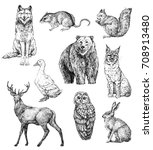 Stock photo set of hand drawn ink animals wolf harvest mouse squirrel bear goose deer owl hare lynx 708913480