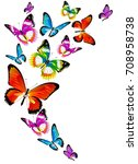beautiful color butterflies set ... | Shutterstock .eps vector #708958738