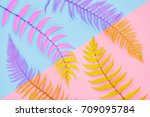 fern fashion. tropical leaf.... | Shutterstock . vector #709095784