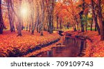 Wonderful Landscape With Autum...