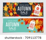 abstract  illustration autumn... | Shutterstock . vector #709113778