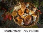 a beautiful still life from...   Shutterstock . vector #709140688