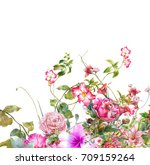 watercolor painting of leaves...   Shutterstock . vector #709159264