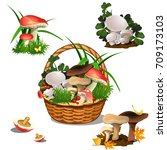 Basket With Mushrooms Isolated...