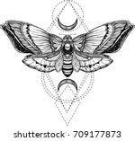 black and white deadhead... | Shutterstock .eps vector #709177873