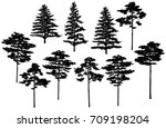 set of silhouettes of spruce... | Shutterstock .eps vector #709198204