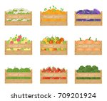 fresh healthy vegetables and... | Shutterstock .eps vector #709201924