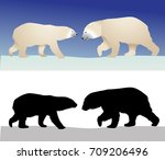 polar bears in color image and... | Shutterstock .eps vector #709206496
