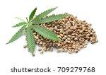 heap of hemp seeds on white...   Shutterstock . vector #709279768