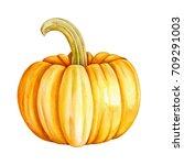 pumpkin watercolor   Shutterstock . vector #709291003