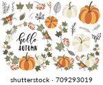 collection of autumn and fall... | Shutterstock .eps vector #709293019