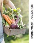 closeup of man farmer holding... | Shutterstock . vector #709321738