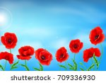 greeting card poppies flowers....   Shutterstock . vector #709336930
