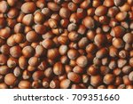 hazelnuts. food background ... | Shutterstock . vector #709351660