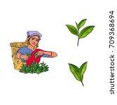 vector sketch cartoon indian... | Shutterstock .eps vector #709368694
