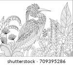 gray heron bird in the forest...   Shutterstock .eps vector #709395286