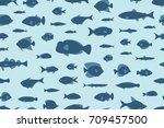 seamless pattern fishes | Shutterstock .eps vector #709457500