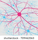 nerve cells of the human....   Shutterstock .eps vector #709462063
