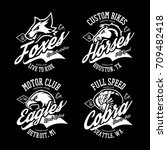 vintage furious cobra  eagle ... | Shutterstock .eps vector #709482418