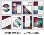 abstract vector layout... | Shutterstock .eps vector #709503889