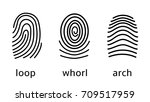 three fingerprint types on... | Shutterstock .eps vector #709517959