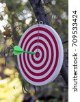 Small photo of Concept of achieving the goal. Sport. Darts, close-up