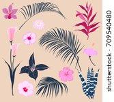 set of  vector  beautiful... | Shutterstock .eps vector #709540480