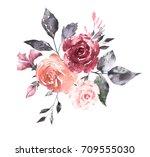 watercolor flowers. hand... | Shutterstock . vector #709555030