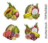 Exotic Tropical Fruits Icons....