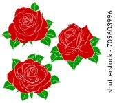 painted set of roses. roses...   Shutterstock .eps vector #709603996