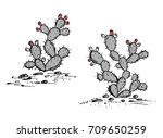 prickly pear vector. opuntia... | Shutterstock .eps vector #709650259