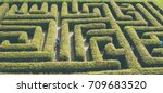 natural maze from the hedge... | Shutterstock . vector #709683520